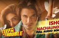 'Teefa in Trouble' takes Pakistani film industry by storm